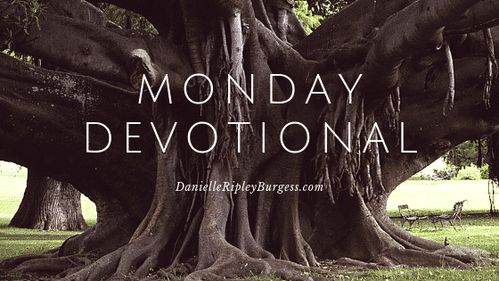 daily-devotional-for-today-danielle-ripley-burgess