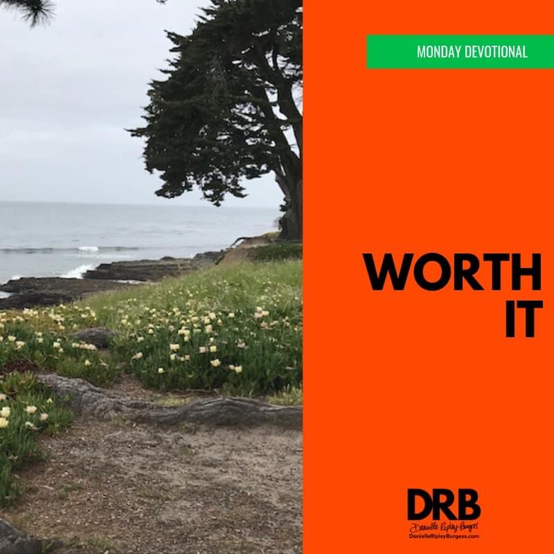 Devo Image - Spring series - Worth It