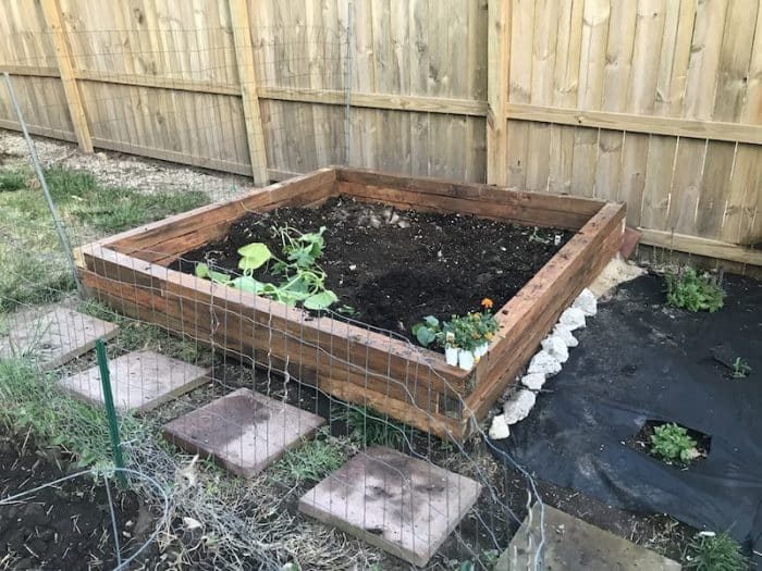 filled-raised-bed